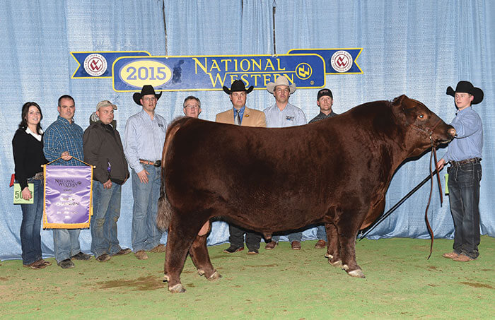 NWSS 2015 – Red Six Mile Kill Switch 135Z Named Champion Bull